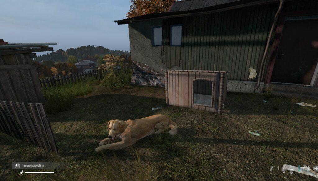 dayz-dog-mod-golden-retriever